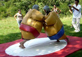 Борьба сумо с татами
